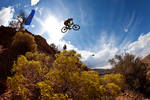 ALEX_PROCHAZKA,_RED_BULL_RAMPAGE_2010_FINAL.jpg